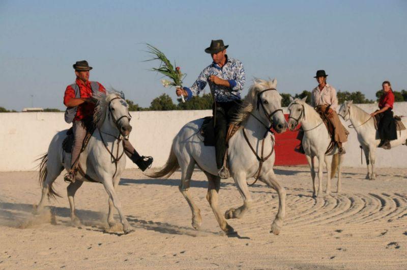 demonstration-equestre-auberge-cavaliere-du-pont-des-bannes-camargue
