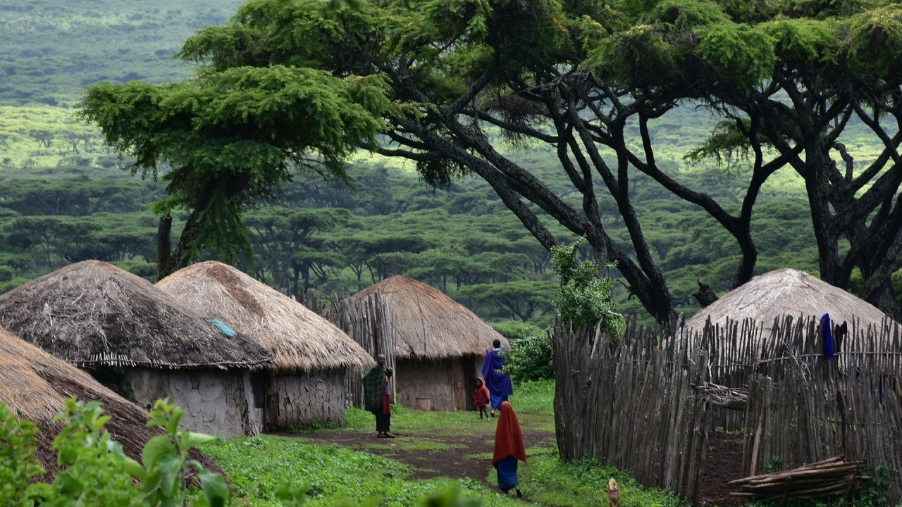 GREEN INSPIRATIONS - TANZANIE - solution pour les PCRs